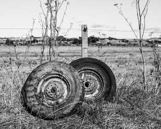 Discarded wheels on the East Coast Road, Whakatiwai